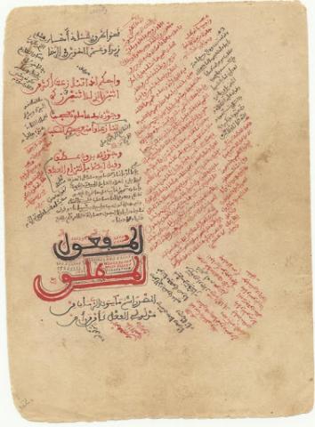 ألفية ابن مالك وطررها كانت أهم مقررات المحظرة.